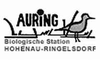 Logo www.auring.at