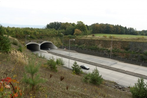 "The overpass ""Dolní Újezd"" is the 1st wildlife overpass in the Czech Republic"