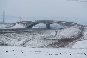 Large overpass (for bears, mooses and other big animals), 326.1 km of Highway D1, Suchdol nad Odrou. From the underpass (in the left corner of this picture where fencing ends) along both sides of the highway there are strips planted with bushes and trees.