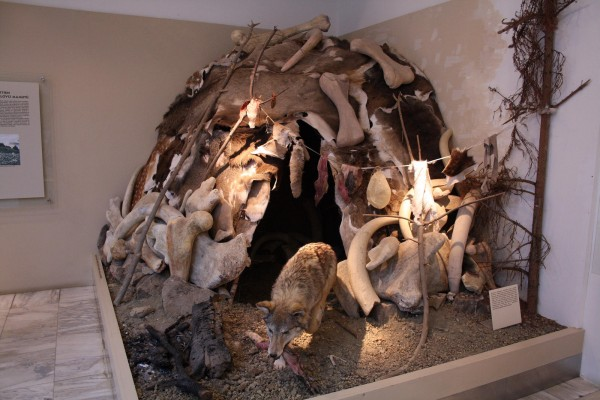 The reconstructed habitation of mammoth hunters